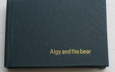Algy and the bear - concertina book