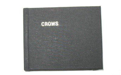 Crows - concertina book